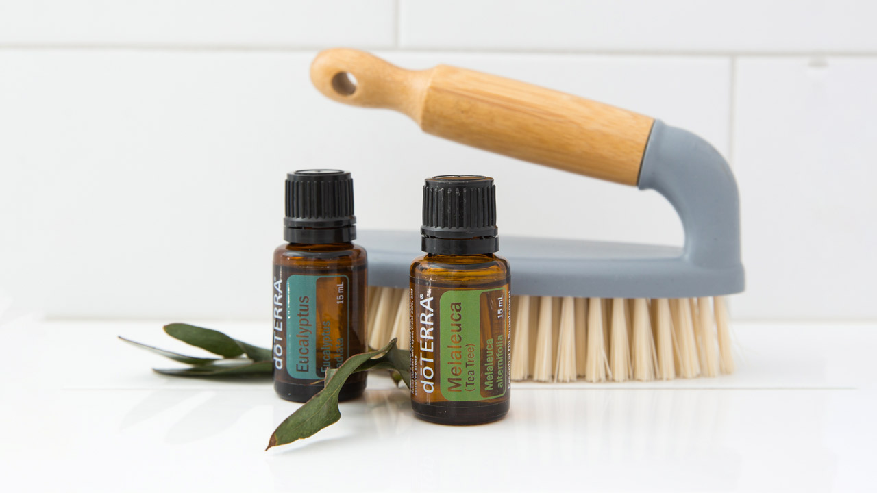 Cleaning With Oils Other Than Citrus Dterra Essential Gieve Eucalyptus Hair Conditioner As Popular Lemon Wild Orange And Tangerine Are In The Diy World There Many That You Can Add To Your