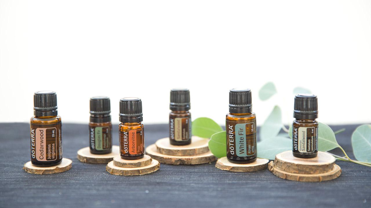 Using the Wood Essential Oils   dōTERRA Essential Oils