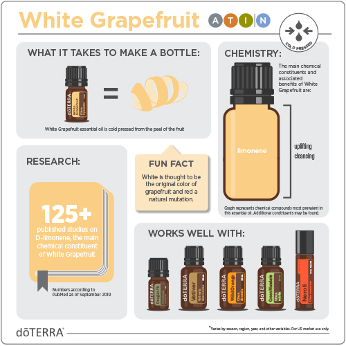 1x1-500x500-white-grapefruit-infographic-2.jpg