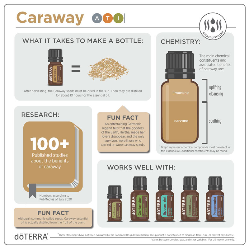 Caraway Info-graphic