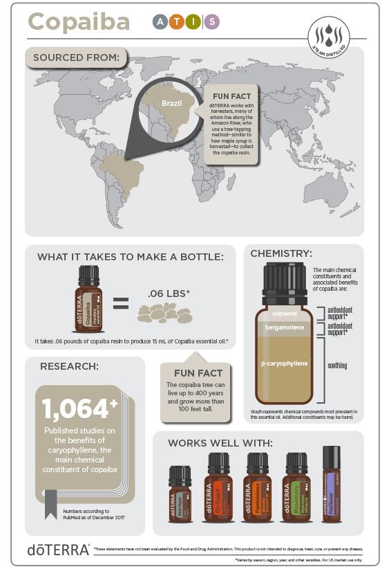2x3-566x819-copaiba-infographic2.jpg