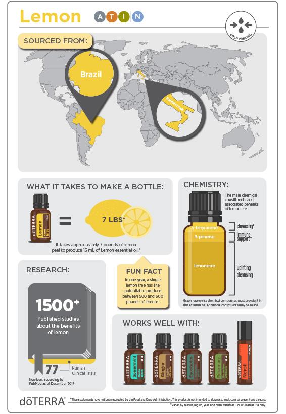 2x3-566x819-lemon-infographic-updated.jpg