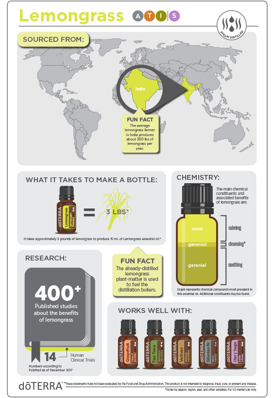 2x3-566x819-lemongrass-infographic-update.jpg