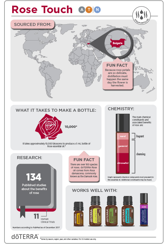 2x3-566x819-rose-touch-infographic-2.jpg