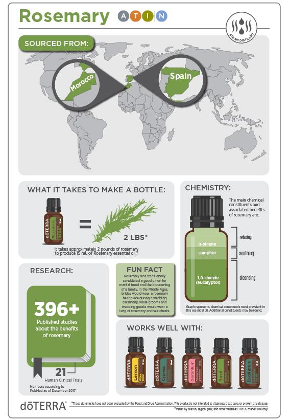 2x3-566x819-rosemary-infographic2.jpg