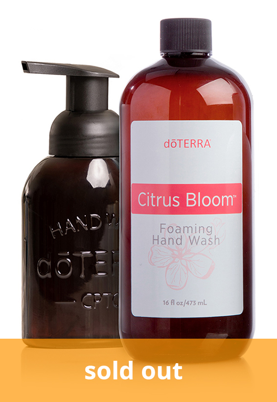 Citrus Bloom™ Hand Wash with Decorative Dispenser