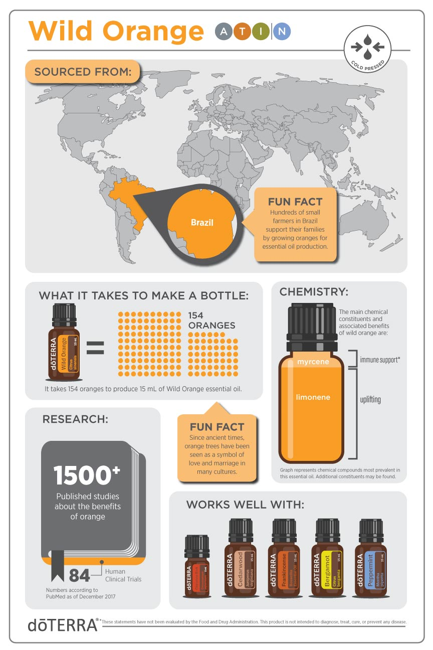 2x3-864x1296-wild-orange-infographic-us-en-web.jpg