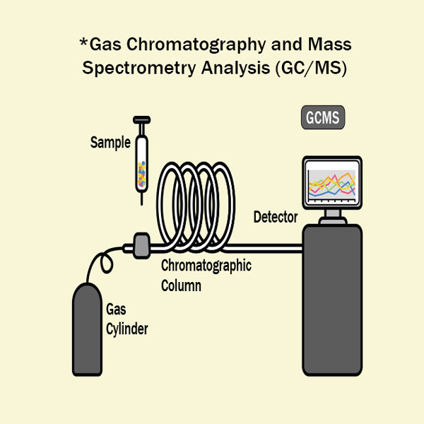 1x1_600x600_gas_chromatography_mass_spectrometry_analysis_gcms_science_us_english_web.jpg