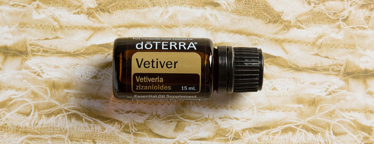 5f1f03d703a The roots of the vetiver plant are unique in their ability to grow  downward