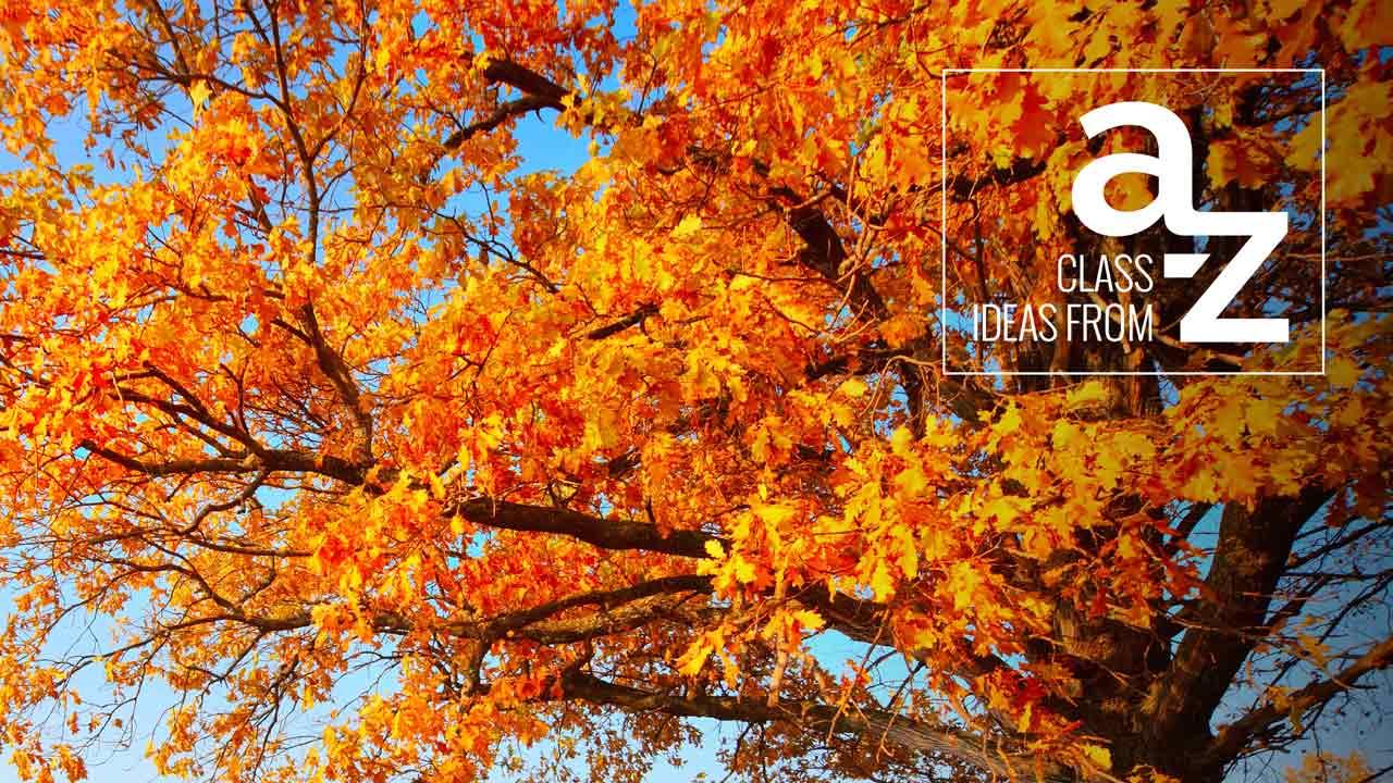 Class Ideas from A to Z: Healthy Halloween | dōTERRA Essential Oils