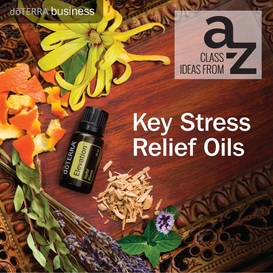 An Essential A Z On Quick Solutions In Weightlifting: Class Ideas From A To Z: Key Stress Relief Oils