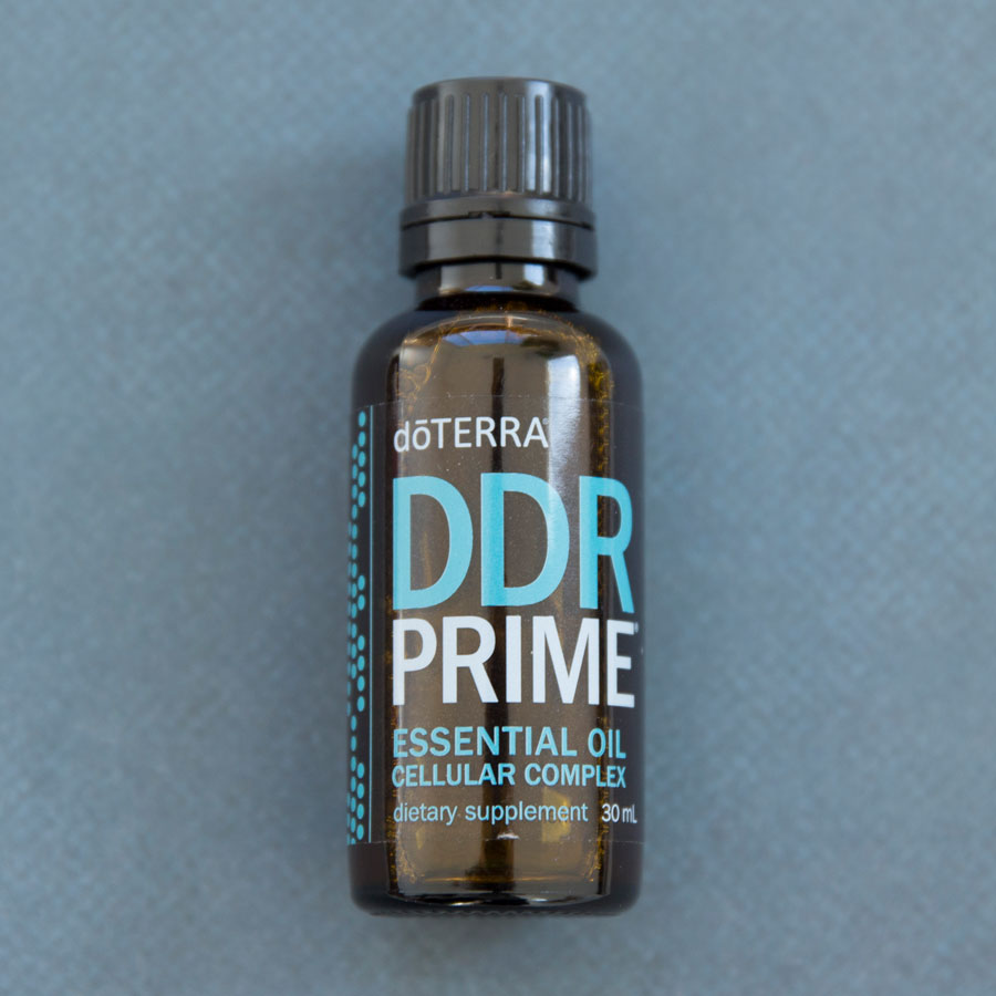 product spotlight  ddr prime