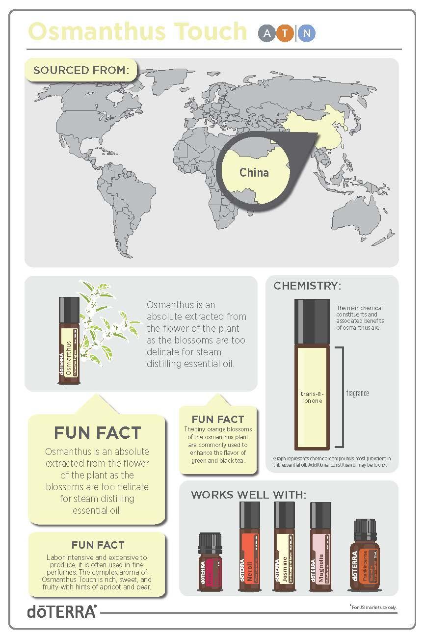 Osmanthus Touch_Infographic_v1.jpg